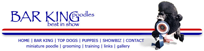 Bar King Poodles navagation bar for the web site